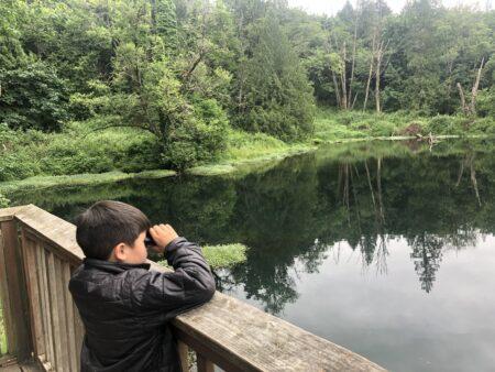 Child bird watching at the lake at Columbia Springs